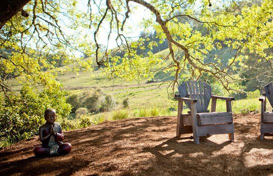 Rosemary's Bell Valley Retreat